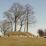 <!--:da-->Mindehøjen over de faldne, Broager Kirkegård.<!--:--> <!--:de-->Denkmal für die Gefallenen, Friedhof Broacker.<!--:--> <!--:en-->Memorial to the fallen, Broager churchyard.<!--:-->